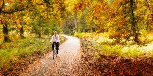 Fietsroutes in de herfst en het najaar