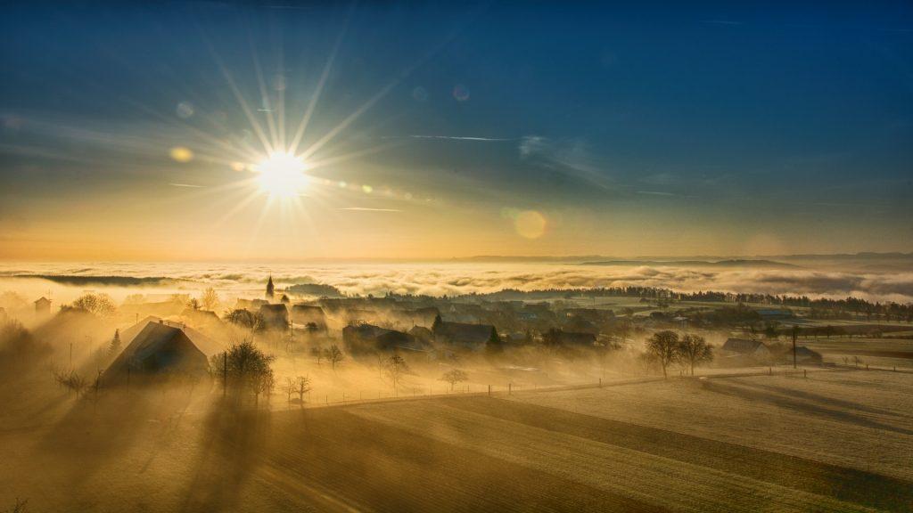 Herfstactiviteiten in Nederland: boswandeling door een dorp gehuld in mist